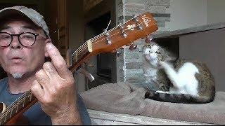 B.J.Thomas ... Raindrops keep fallin' On my Head...guitare ( cover)