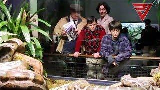 Harry Potter 1 The Sorcerers Stone // Movie Scene Telugu