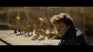 Fantastic Beasts - The Crimes of Grindelwald - New japanese trailer