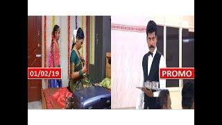 PRIYAMANAVAL SERIAL 01/02/19 PROMO INTERESTING REVIEW | SunTV Tamil