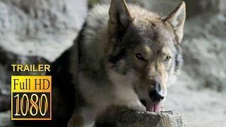 ALPHA Full Movie Trailer (2018) Kodi Smit McPhee, Leonor Varela Action Movie HD