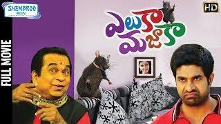Eluka Majaka NEW Telugu Full Movie 4K | Vennela Kishore | Brahmanandam | Raghu Babu |Shemaroo Telugu