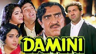 Damini Full Movie | Sunny Deol Movie | Meenakshi Sheshadri | Rishi Kapoor | Superhit Hindi Movie