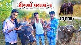 kutchi comedy।ઢીગલો ધલાલ-૨।khimrajfilms official।કચ્છી કોમેડી।kutchi film।