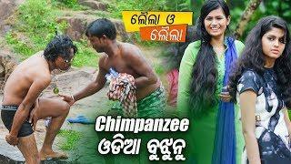 Best Comedy Scene - New Odia Film - Laila O Laila - Chimpanzee Odia Bujhunu - Sarthak Music