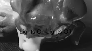 Lps Lights On Lights Off Scary Short Flim
