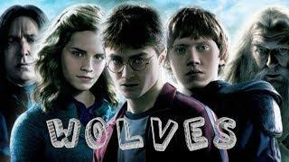 Harry Potter |  Wolves | Mixture of All Parts