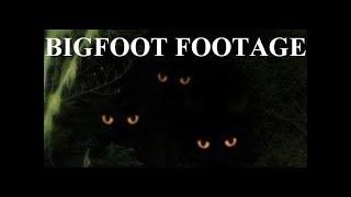 "BIGFOOT FOOTAGE!! - Scared Researchers In The Dark Film Scary Glowing Eyes Of ""Real Sasquatch"""
