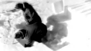 WAR DEPT FILM BULLETIN 220: ARCTIC IGLOO 1948 - HISTORY - HISTORICAL