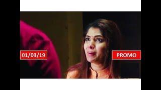 CHANDRAKUMARI SERIAL 01/03/19 PROMO INTERESTING REVIEW | SunTV Tamil