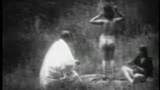 Dancing in the Woods (Vintage Naturalist Stag Film)