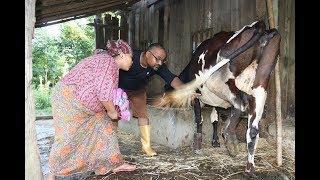 Dobate Episode 177 - दोबाटे भाग १७७ - Nepali Comedy Serial - 20 -07 - 2018